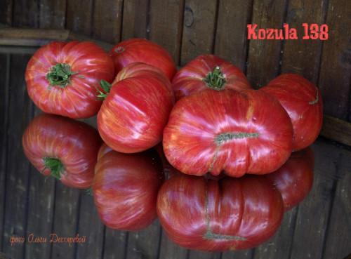 kozula138-Malinowa-zebra-K1016fc9cb03e2fc3f17e.jpg