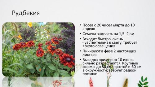 18d57eb746ed9299da.jpg