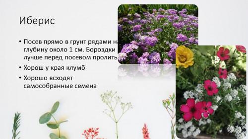 27a877cb43476804c7.jpg